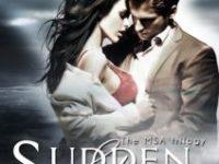 """Recensione: """"Sudden Storm"""" di Chiara Cilli (The MSA Trilogy #1)"""