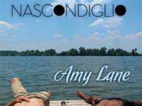 """Recensione: """"Il nascondiglio"""" di Amy Lane"""
