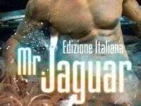 """Recensione: """"Mr Jaguar"""" di K.A. Merikan"""