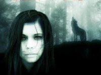 """Dentro il libro: """"Dire Wolf"""" di Raffaella Grandi."""
