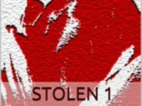 "Recensione : "" Stolen 1- Dark Necessities Series "" di  J.D. Hurt"