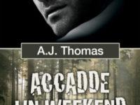 "Dentro il libro: ""Accadde un weekend"" di A.J. Thomas * Colleghi improbabili #1"