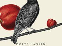Il paese dei ciliegi, di Dörte Hansen