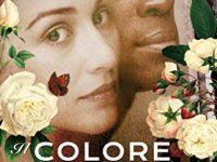 Il colore dei segreti, di Lindsay Jayne Ashford